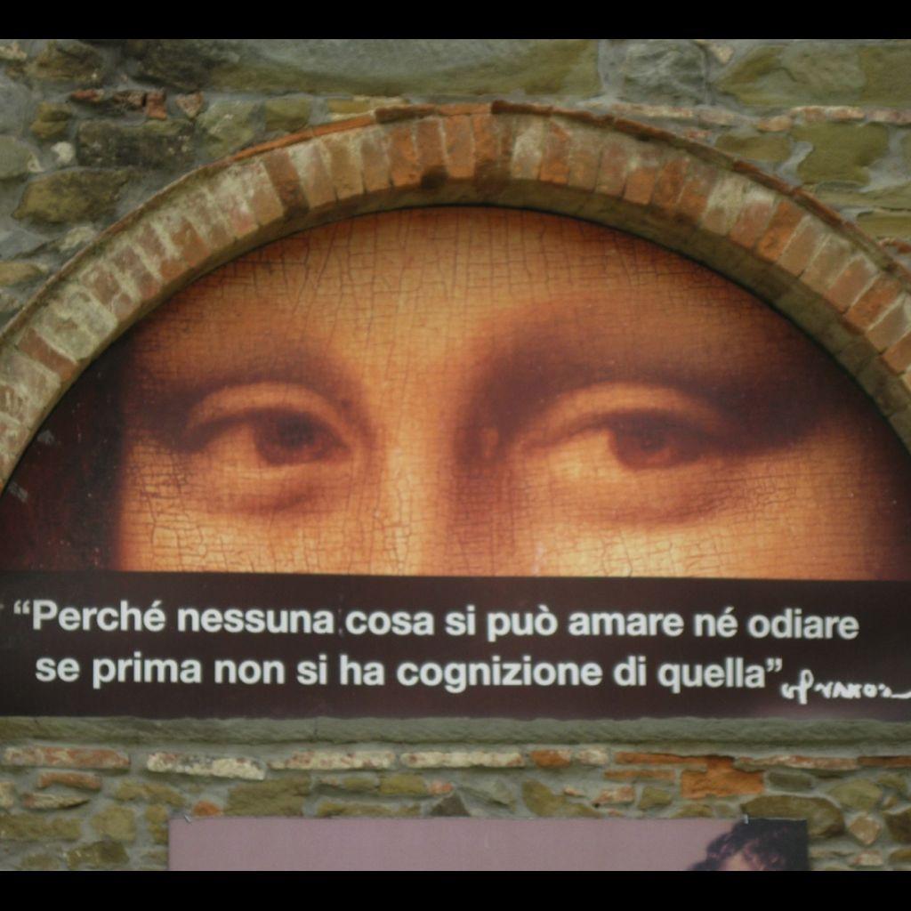 Leonardo da vinci la vita di un vero genio beatrice for La vita di leonardo da vinci