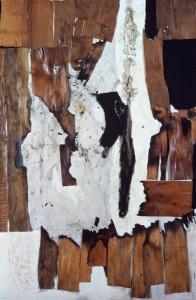 6 combustione legno 1956