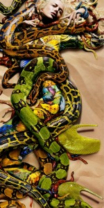 26 snake-fashion-photography