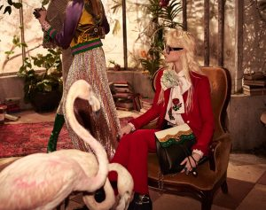31 gucci-prefall-16-ads-07
